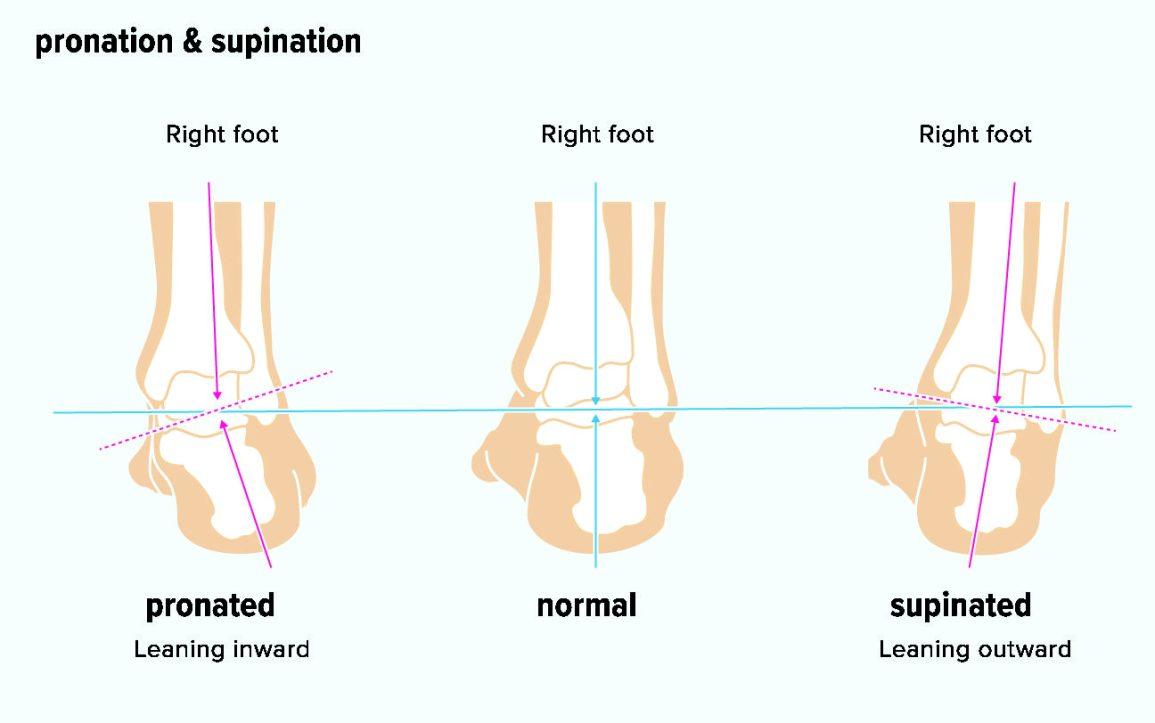 Supinazione e Pronazione del piede